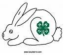 4-H Cottontails
